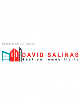 DAVID SALINAS GESTION INMOBILIARIA